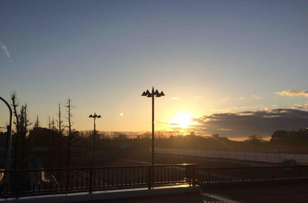 駒沢公園夜明け
