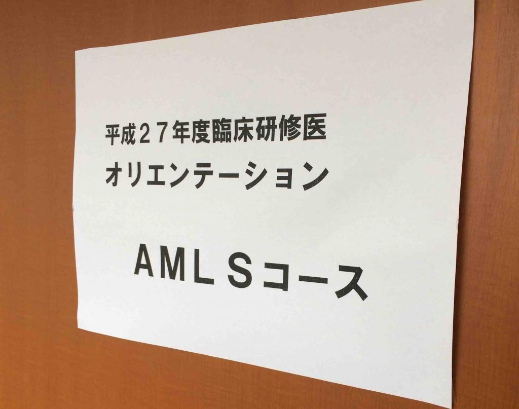 AMLS1