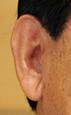 耳朶下村文科
