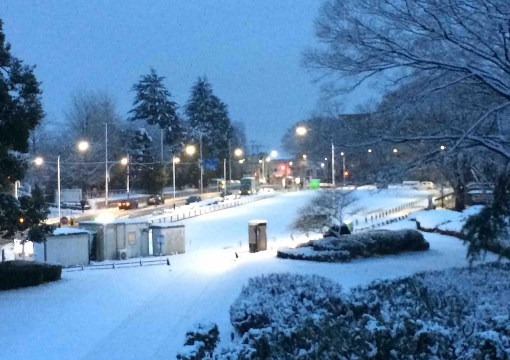 Snow 駒沢