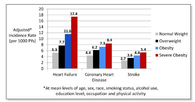 Obesity CVD risk